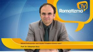 Prof. Dr. Süleyman Koca - Böbrek fonksiyonları nasıl ölçülür? Kreatinin klirensi nedir?