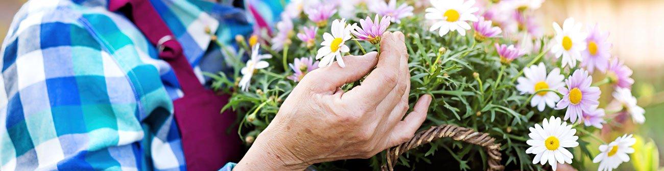 Romatoid Artrit - çiçek tutan el
